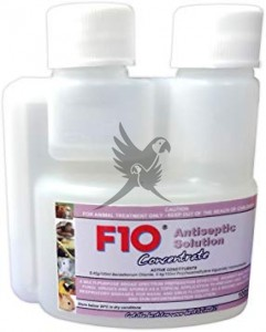 F10 Antiseptic Solution Concentrate 100ml